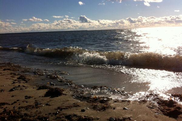 Estonie plage